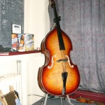 Fiddle bass